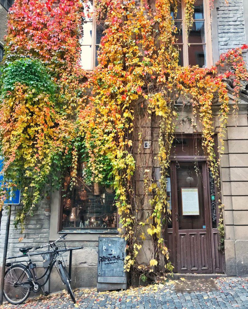 estocolmo otoño