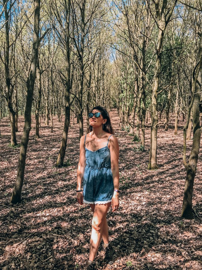 EPPING FOREST HIKES